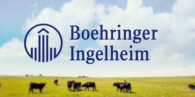 Programa de pontos: Boehringer Ingelheim